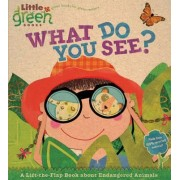 What Do You See?: A Lift-The-Flap Book by Dr Stephen Krensky