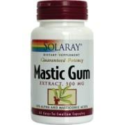 Mastic Gum Actioneaza eficient impotriva bacteriei Helicobacter pylori
