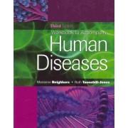 Workbook to Accompany Human Diseases by Marianne Neighbors