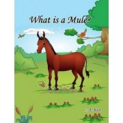 What is a Mule? by Alice Root