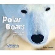 Polar Bears by Elaine Landau