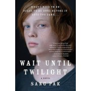 Wait Until Twilight by Sang Pak