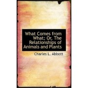 What Comes from What; Or, the Relationships of Animals and Plants by Charles L Abbott