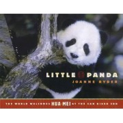 Little Panda by Joanne Ryder