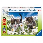 Puzzle Pisicute si margarete, 100 piese, RAVENSBURGER Puzzle Copii