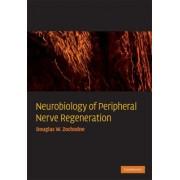 Neurobiology of Peripheral Nerve Regeneration by Douglas W. Zochodne