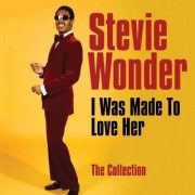 Stevie Wonder - I Was Made To Love Her (0600753323731) (1 CD)