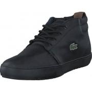 Lacoste Ampthill Terra 317 1 BLK, Skor, Sneakers & Sportskor, Chukka sneakers, Svart, Grön, Herr, 40