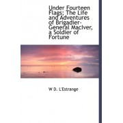 Under Fourteen Flags; The Life and Adventures of Brigadier-General Maciver, a Soldier of Fortune by W D L'Estrange
