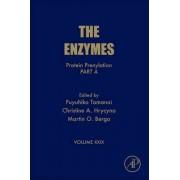 Protein Prenylation, Part A: Volume 29 by Christine Hrycyna