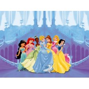 Fototapet Printese Disney - Intrare in Palat
