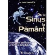 De La Sirius La Pamant - Evelyn Fuqua
