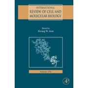 International Review Of Cell and Molecular Biology: Vol. 276 by Kwang W. Jeon
