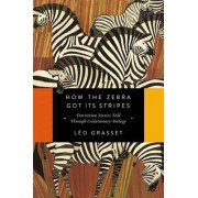How the Zebra Got its Stripes by L