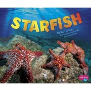 Starfish by Gail Saunders-Smith