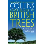 British Trees by Paul Sterry