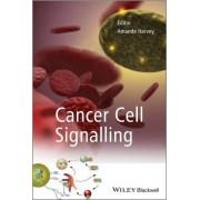 Cancer Cell Signalling by Amanda Harvey
