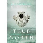 True North by L E Sterling