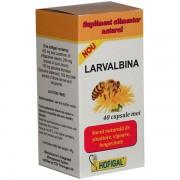 Hofigal Larvalbina 40 capsule