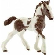Figurina Schleich Tinker Foal