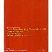 Concertos Brandebourgeois [Blu-Ray] [Import Anglais]