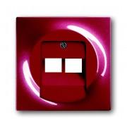 Impuls Braam Centraalplaat voor Datacontactdoos 2-voudig Busch Jaeger 1803-02-777 (1753-0-0129)