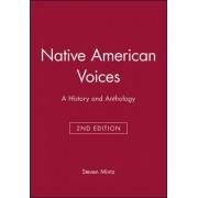 Native American Voices by Steven Mintz