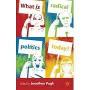 What is Radical Politics Today? by Jonathan Pugh