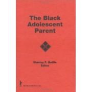 The Black Adolescent Parent by Peter R Correia