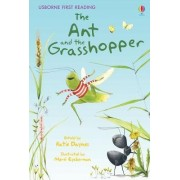 The Ant and the Grasshopper by Katie Daynes