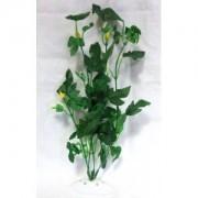 """Rostlina serie APS 12"""" in blister box - DOPRODEJ"""