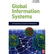 Global Information Systems by Dorothy E. Leidner