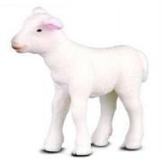 Collecta - Lamb 88009