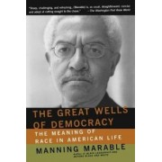 The Great Wells of Democracy by Manning Marable