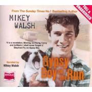 Gypsy Boy on the Run by Mikey Walsh