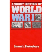 A Short History of World War I by James L. Stokesbury