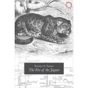 The Fire of the Jaguar