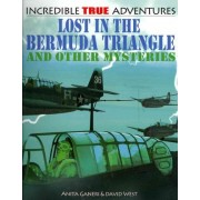 Lost in the Bermuda Triangle and Other Mysteries by Anita Ganeri