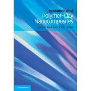 Fundamentals of Polymer-Clay Nanocomposites by Gary W. Beall