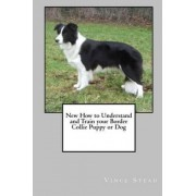 New How to Understand and Train Your Border Collie Puppy or Dog by Vince Stead