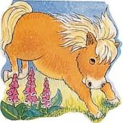 Pocket Pony by Pam Adams