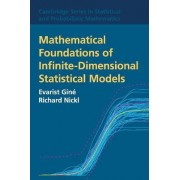 Mathematical Foundations of Infinite-Dimensional Statistical Models by Evarist Gin