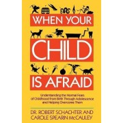 When Your Child is Afraid by Schachter