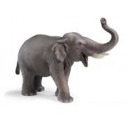 Schleich 14144 - Figura/ miniatura La vida silvestre, Indian Elephant