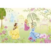 Fototapet Printese Disney - Trei Printese Vesele
