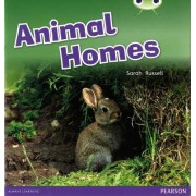 Animal Homes by Sarah Russell