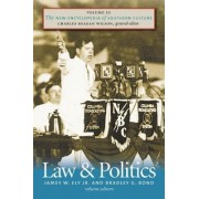 The New Encyclopedia of Southern Culture: Law and Politics v. 10 by James W. Ely