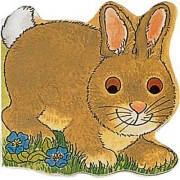 Pocket Bunny by Pam Adams