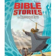 Bible Stories for Courageous Boys by B&h Kids Editorial