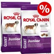 Dubbelpak: 2 x grote zak Royal Canin Size- Giant Hondenvoer - Giant Adult (2 x 15 kg)